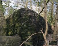 Fiddle eyes (Jewish cemetery/Joodse begraafplaats - Flevopark - Amsterdam)
